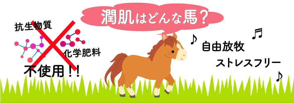 潤肌、うるはだ、馬プラセンタ、自由放牧、ストレスフリー、抗生物質、化学肥料、不使用